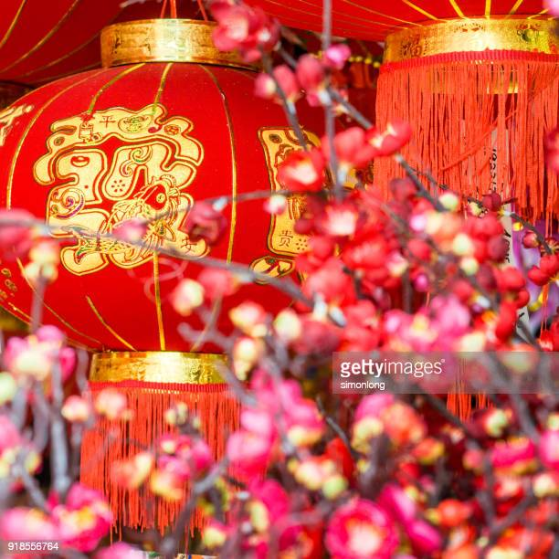 close up view of red lanterns for chinese new year - chinese lantern festival stock pictures, royalty-free photos & images