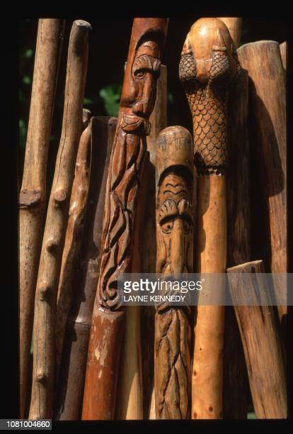 A close up view of walking sticks made from pine driftwood cactus and agave that are supplied to hikers by guides Jim and Nikki Johnson
