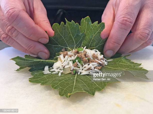 close up view of woman hands preparing dolma - rafael ben ari stock-fotos und bilder