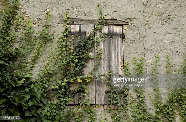 close window - modena stock pictures, royalty-free photos & images