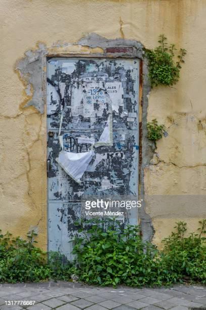 closed door with greenery - vicente méndez fotografías e imágenes de stock