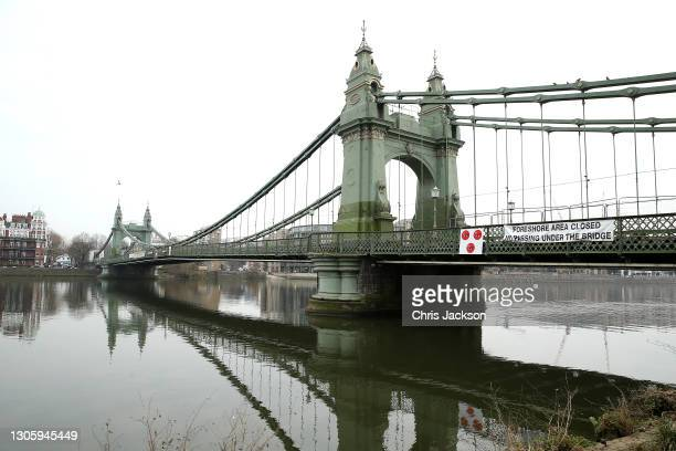 Closed Hammersmith Bridge just up river from where a seal rests on the banks of the River Thames in Hammersmith on March 08, 2021 in London, England....