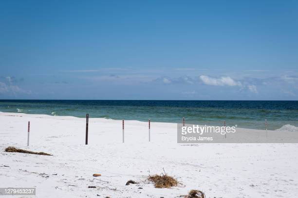 closed signs at gulf island national seashore - brycia james stock pictures, royalty-free photos & images