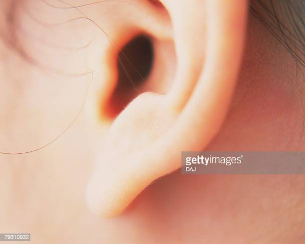 closed up image of an ear, side view, differential focus - earlobe stock photos and pictures