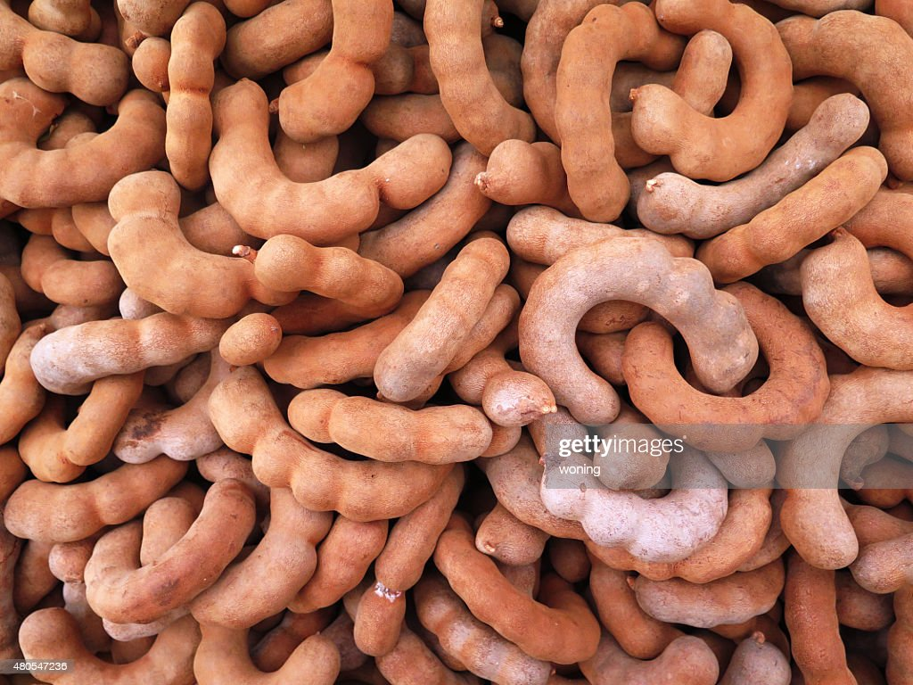 closed up the group of tamarind, spicy fruit : Stock Photo