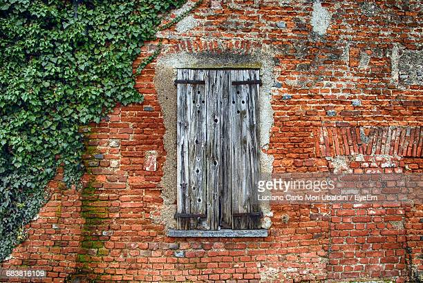 Closed Wooden Window Of Old Building