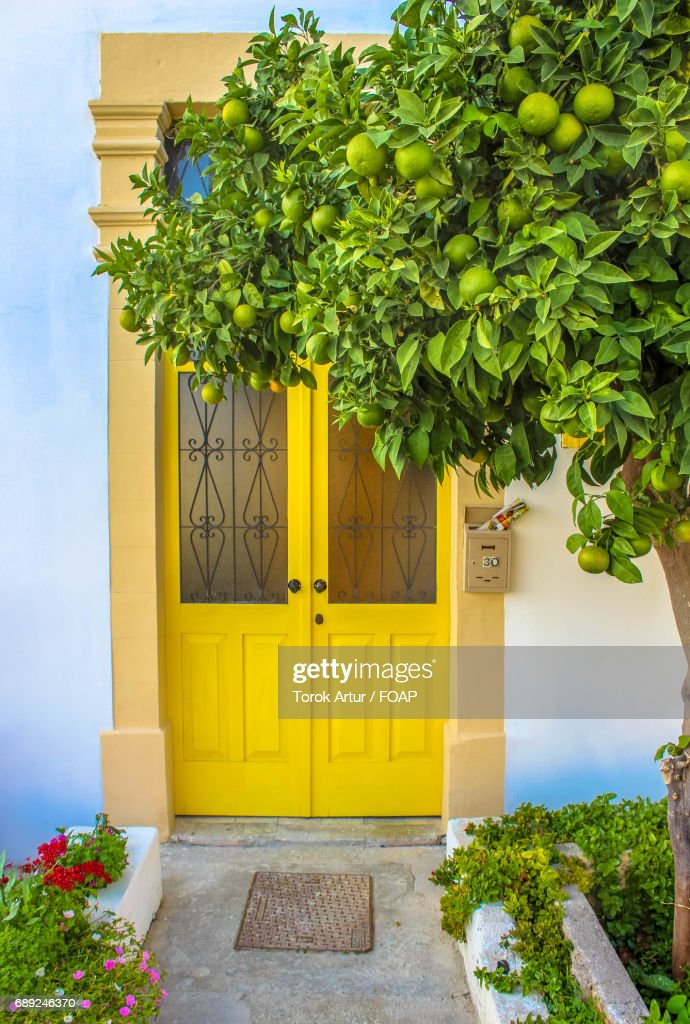 Closed yellow door of house amidst trees : Stock Photo