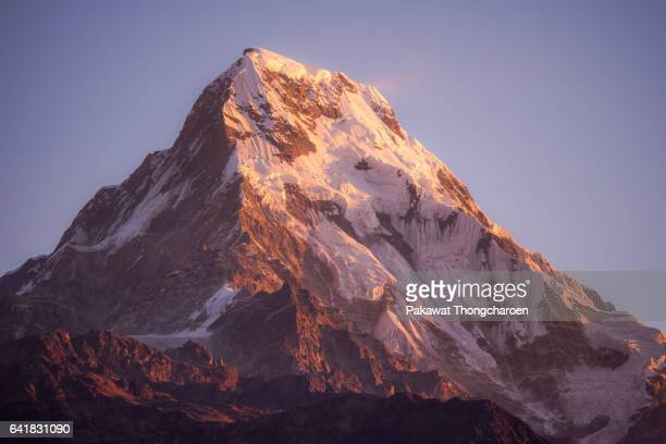 close-up annapurna south peak at sunrise from poon hill, annapurna conservation area, nepal - annapurna south stock photos and pictures