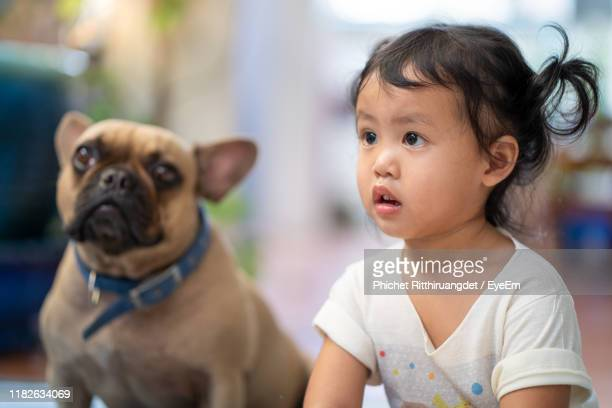 close-up cute girl with dog indoors - phichet ritthiruangdet stock photos and pictures