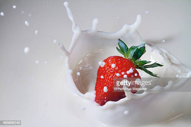 Closeup detail of a strawberry dropping into a pool of milk taken on February 19 2014