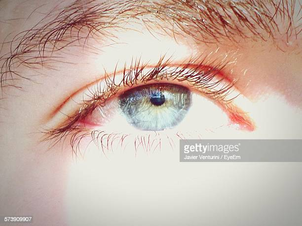 Close-Up Eye Of Person Outdoors