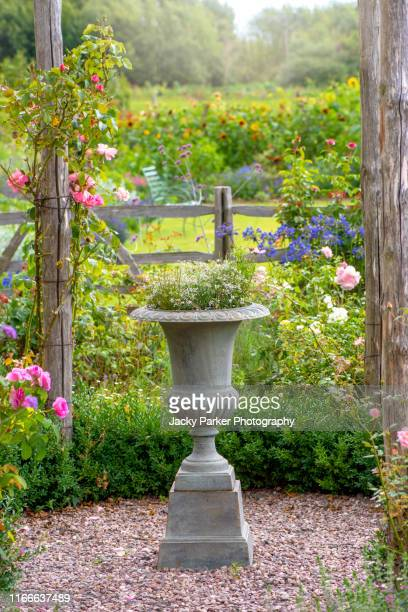 close-up image of a concrete rustic garden planter in an english cottage garden with soft pink roses - jardin fleuri photos et images de collection