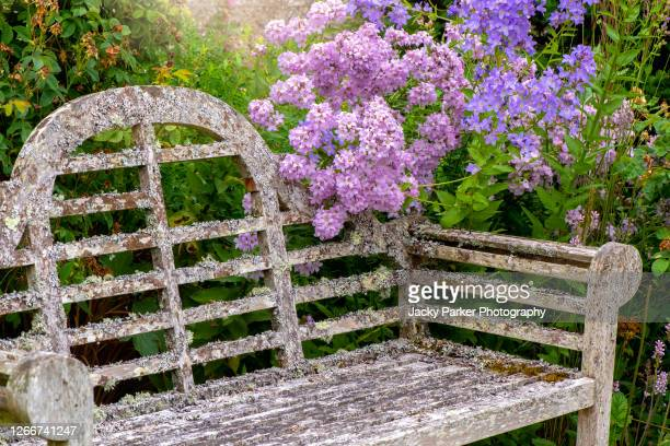 close-up image of a rustic/shabby chic wooden garden bench surrounded by colourful summer flowers in an english garden - wood material stock pictures, royalty-free photos & images