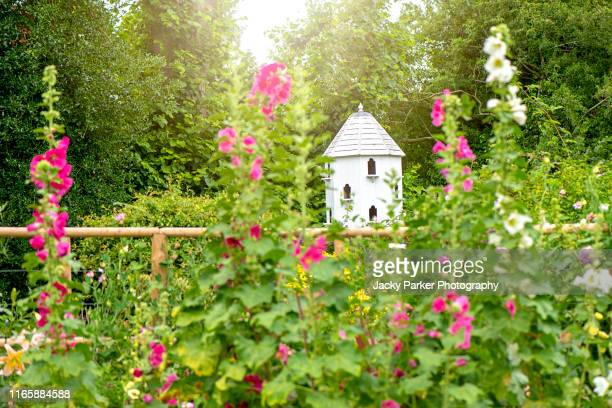 close-up image of a white dovecote or dovecot or doocot in an english cottage garden in soft sunshine - jardin fleuri photos et images de collection
