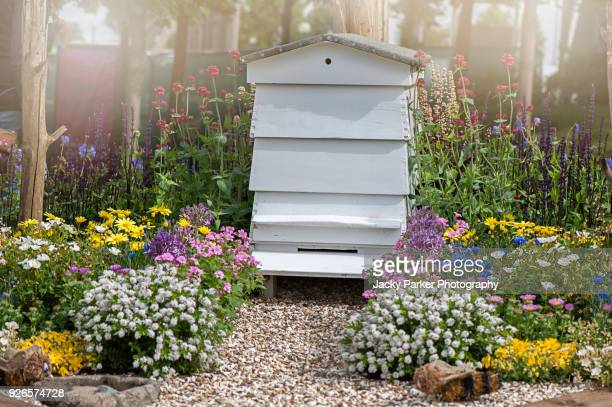 close-up image of a white, wooden bee hive with summer flowers and a stone gravel path - beehive stock pictures, royalty-free photos & images