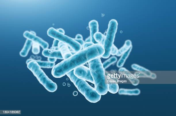 close-up of 3d rendering microscopic blue bacteria. - 大腸菌 ストックフォトと画像