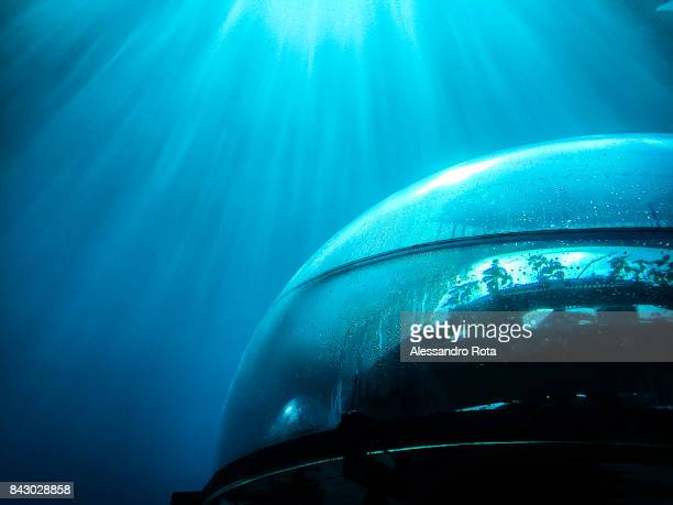 A closeup of a biosphere is seen underwater anchored to the sea bottom between three and nine metres below the surface on August 2 2017 Nemo's Garden...