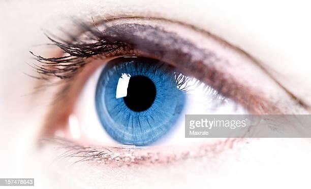 Close-up of a blue eye reflecting light
