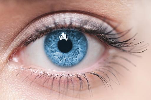 A close-up of a blue female human eye 179209374