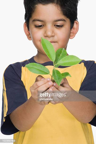 Close-up of a boy holding a plant