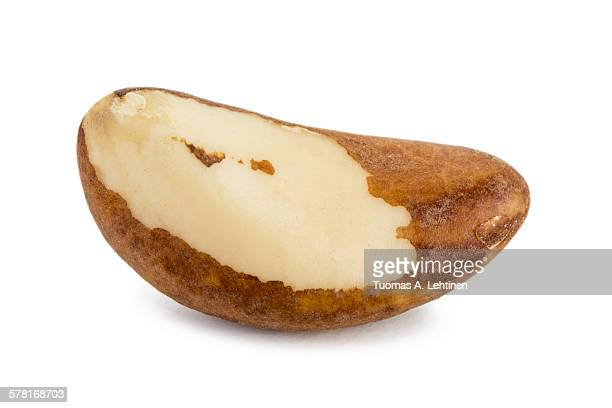 closeup of a brazil nut - brazil nut stock photos and pictures