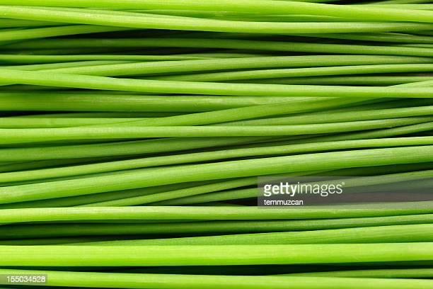 primo piano di un mazzo di erba cipollina sdraiato. - macrofotografia foto e immagini stock