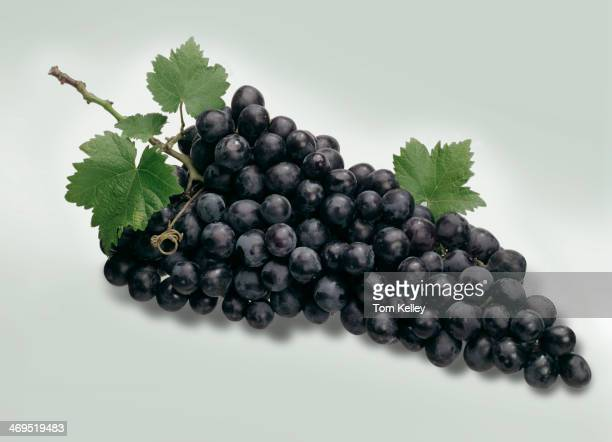 Closeup of a bunch off purple grapes against a gray background 2010