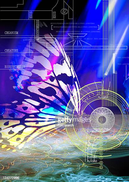close-up of a butterfly superimposed on a blue background - computer system diagram stock photos and pictures