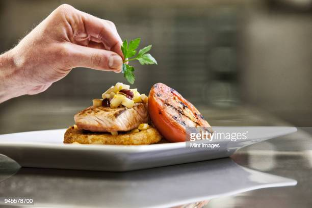 Close-up of a chefs hands adding a garnish to a salmon dinner plate.