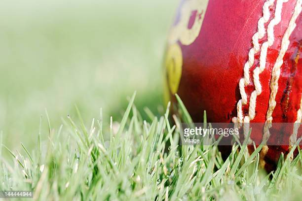 Close-up of a cricket ball