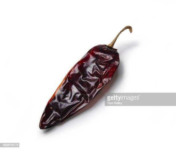 Closeup of a dried guajillo chili pepper on a white background 2013