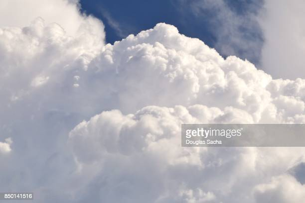 close-up of a forming cumulus cloud - nuvens fofas imagens e fotografias de stock