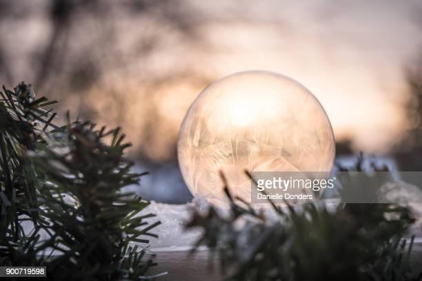 Closeup of a frozen soap bubble at dawn