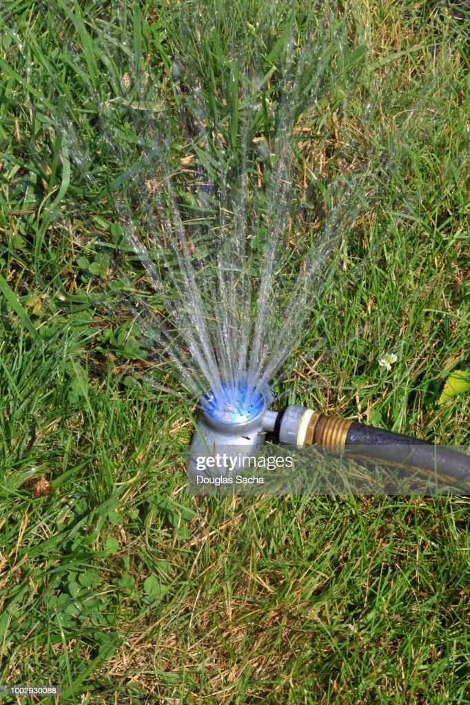 Closeup Of A Garden Sprinkler And Hose Stock Photo Getty