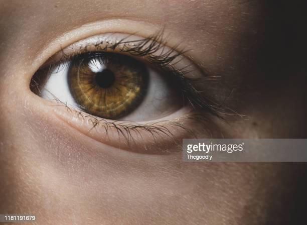close-up of a girl's brown eye - primissimo piano foto e immagini stock
