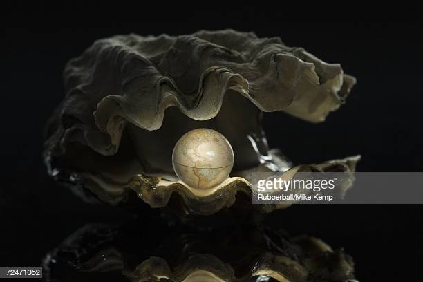 close-up of a globe in an oyster - pearl jewellery stock pictures, royalty-free photos & images