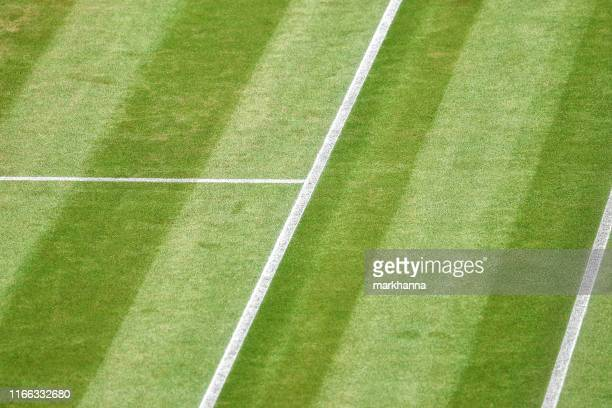 close-up of a grass tennis court - tennis stock pictures, royalty-free photos & images