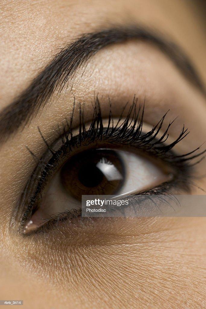 Close-up of a human eye : Foto de stock