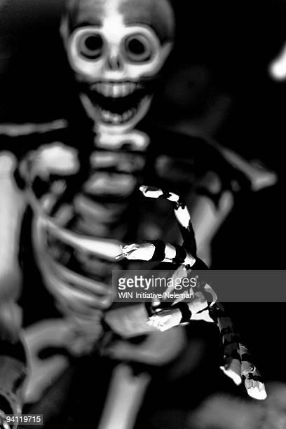 Close-up of a human skeleton, Mexico City, Mexico