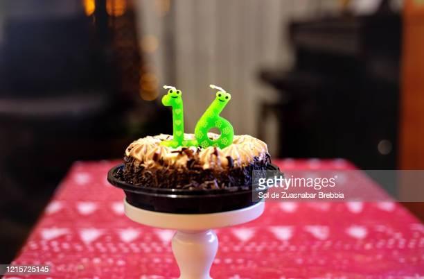 Peachy 60 Top 16Th Birthday Fotos En Beelden Getty Images Funny Birthday Cards Online Necthendildamsfinfo