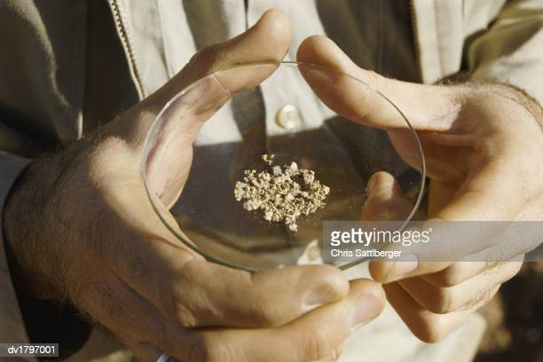 close-up of a man holding a dish of small gold nuggets, australia - gold rush stock photos and pictures
