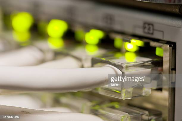 のクローズアップのネットワーク接続スイッチ