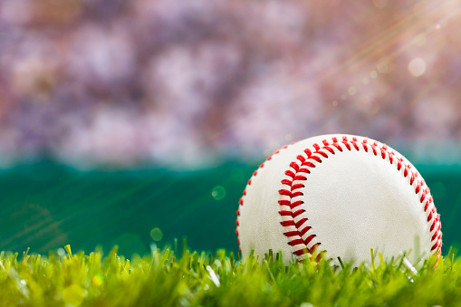 Close-up of a new baseball sitting in the outfield grass of a stadium with crowd and sunbeams. 1130327623