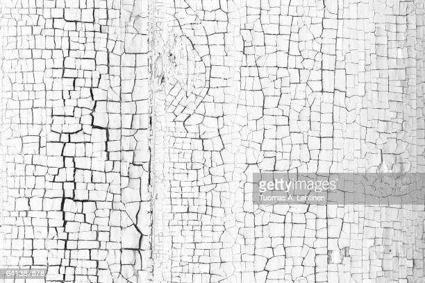 Close-up of a paint peeled off of a wall in black&white.