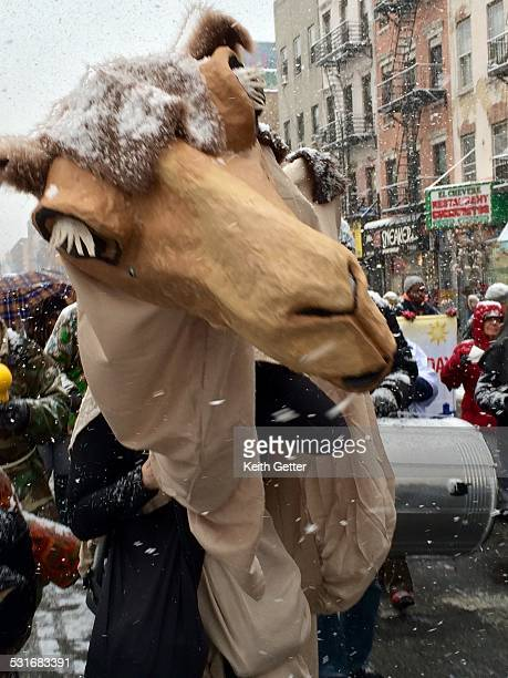 CloseUp of a Person in a Camel Costume Marching with the Celebrants at the Annual Three Kings Day Parade in Spanish Harlem Manhattan NYC USA along...