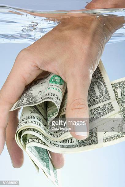 Close-up of a person's hand holding paper currency in water