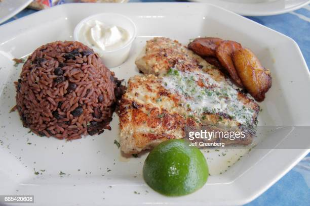 A closeup of a plate of food from Miami Outboard Club Marina restaurant