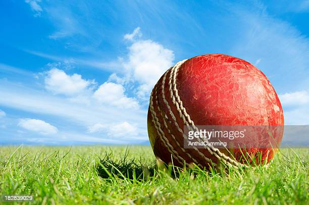 Close-up of a red cricket ball on green grass