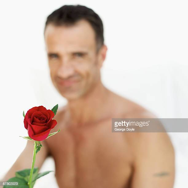 close-up of a red rose and a bare chested man behind (blurred) - bare chested man foto e immagini stock