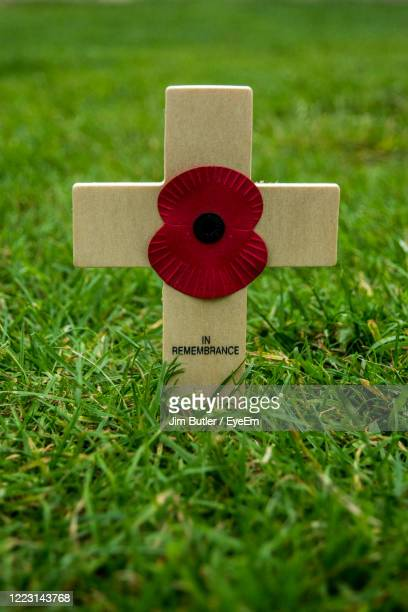 close-up of a remembrance poppy on a wooden cross - remembrance day stock pictures, royalty-free photos & images